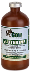 eUterine - 1 bottle