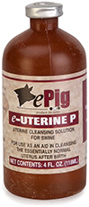 eUterine P - per bottle